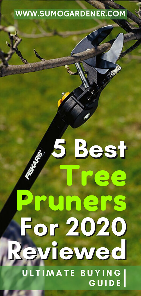 5 Best Tree Pruners For 2020 Reviewed | Ultimate Buying Guide