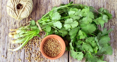Coriander and Cilantro are the same plant