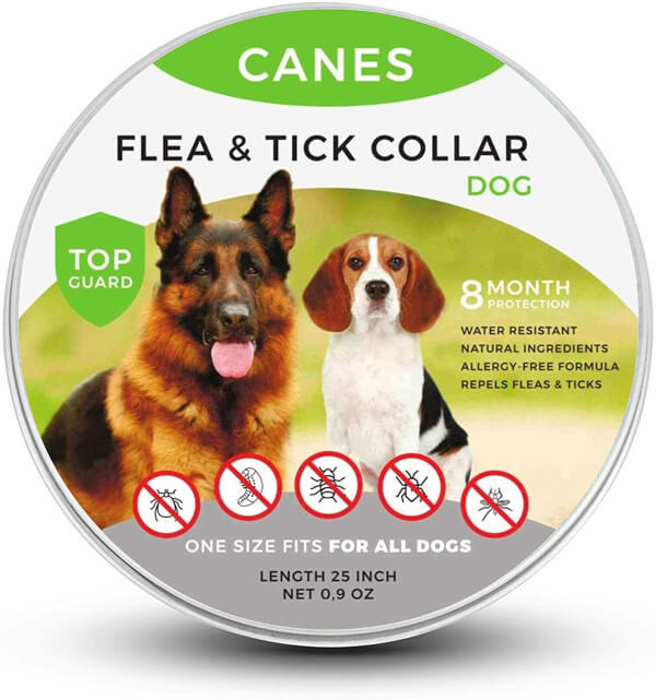 use the best Flea and Tick Collars on The Market