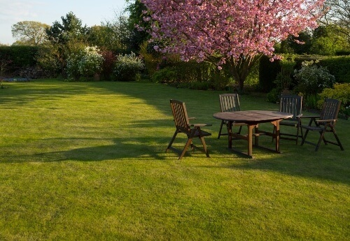 how to level a lawn to remove all bumps and dips