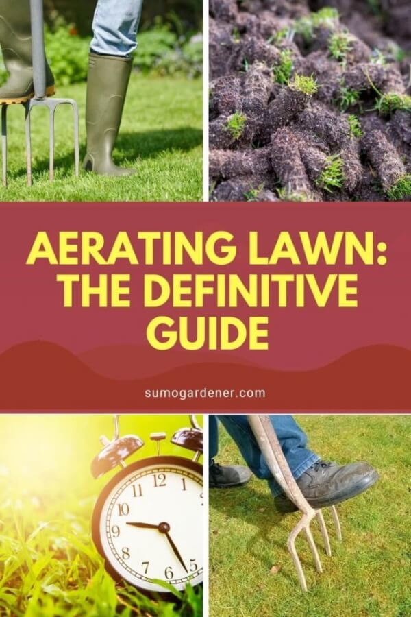 How To Aerate Lawn?
