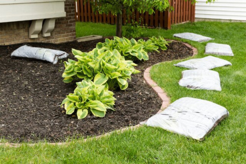 How to Apply Pine Needle Mulch
