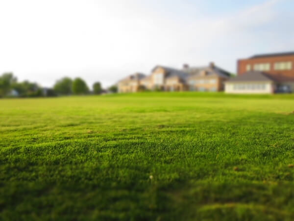 Lawn aeration is a good step to ensuring that you have health and quality grass on your lawn