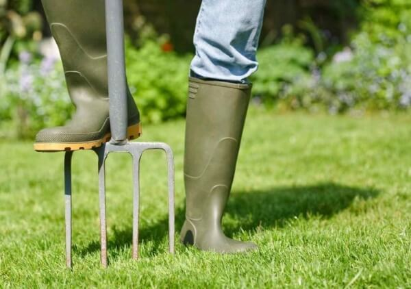 Why Aerating Your Lawn Matters?